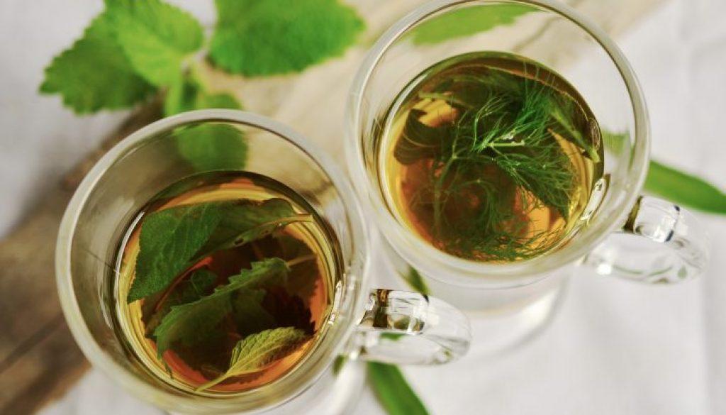 herbal-tea-herbs-tee-mint-159203-720x460